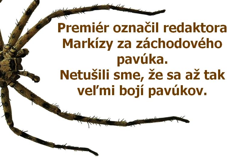Premiér označil redaktora Markízy za záchodového pavúka. Netušili sme, že sa až tak veľmi bojí pavúkov.