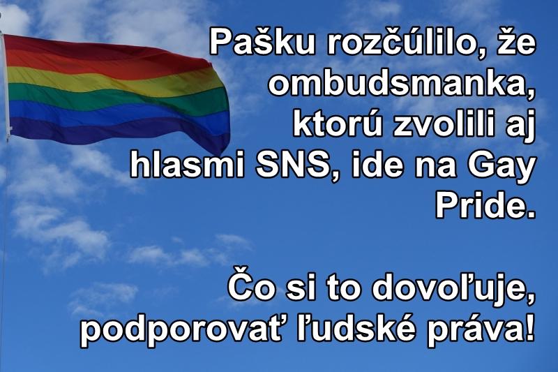Pašku rozčúlilo, že ombudsmanka, ktorú zvolili aj hlasmi SNS, ide na Gay Pride. Čo si to dovoľuje, podporovať ľudské práva!